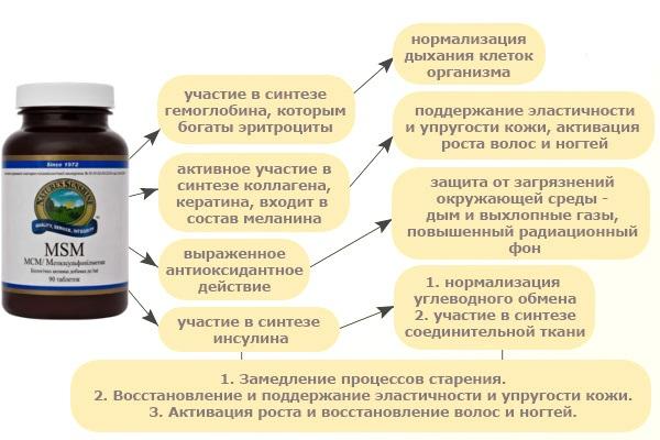 МСМ НСП