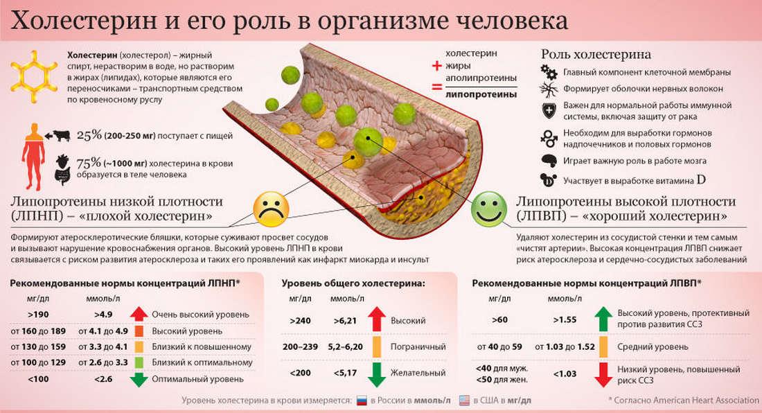 Холестерин и омега 3